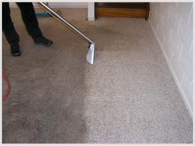 Thoroughly Clean Carpets And Upholstery