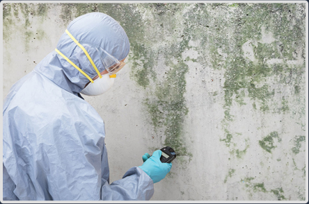 Prevent Mold Problems