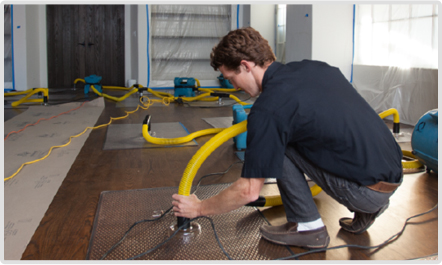 water removal process for Mold